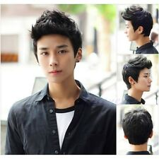 Mens Wig Vogue Sexy Korean Boys Handsome Short Hair Cosplay Male Full Wigs Black
