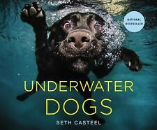 Underwater Dogs by Seth Casteel (2012, Hardcover)