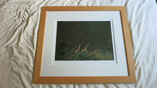 Rolf Harris - 'Giraffes Browsing - Kenya' (Framed Rare Limited Edition)