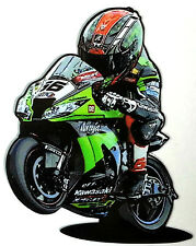 Tom Sykes 66 in moto  adesivo stickers tributo  kawaki carene cashi codino