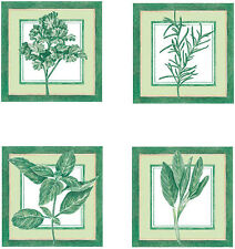 Rosemary Herb Sage Basil Parsley 25 Wallies Kitchen Spice Wallpaper Cutout Decor