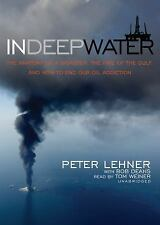 In Deep Water : The Anatomy of a Disaster, the Fate of the Gulf, and How to End…