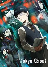 **License Poster** Tokyo Ghoul Ken Kaneki & Ghouls Key Art Wallscroll #86249