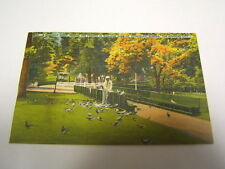 Postcard Williams Park St. Petersburg FL Used 1949