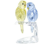 Swarovski Crystal BUDGIES BIRDS  5004725