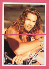 Lorenzo Lamas Falcon Crest TV Series  - Italy Best Sticker Cards