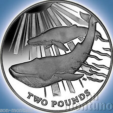 2014 BLUE WHALE SILVER - $10 Sterling Proof Coin South Georgia/Sandwich Islands