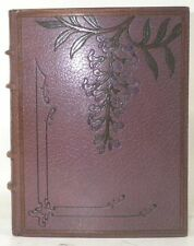 COLETTE WILLY Les Egarements de Minne Edition originale plein maroquin 1905 LAXX