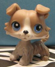 Littlest Pet Shop #67 Gray & White Collie Puppy Dog