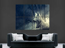 WHITE WOLF WILD ANINIMAL GIANT WALL POSTER ART PICTURE PRINT LARGE HUGE