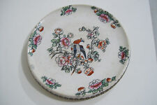 "Imari Style Whieldon Ware Pheasant 5.5"" Plate by F. WINKLE & CO. ENGLAND"