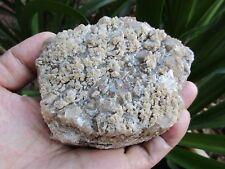 Aussie APOPHYLLITE- Fluorapophyllite-  Broken Hill 10.5x8.5cm 468g (9)  NICE!