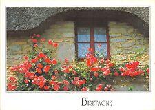 B51120 Bretagne maison typique  france
