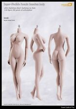 1/6 Phicen Super-Flexible Steel Skeleton Seamless Pale Large Bust S04B Body
