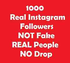 1000 Instagram Real People Like or follower - celeb famous musician supplier