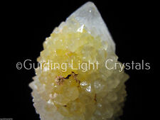 ONE POWERFUL NATURAL STARBRARY CITRINE SPIRIT CACTUS QUARTZ CRYSTAL POINT! MED