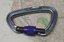 Black Diamond Nitron Screwgate Carabiner Climbing Rock Ice Trad Locking SG
