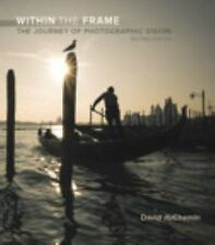 Voices That Matter: Within the Frame by David duChemin (2016, Paperback)