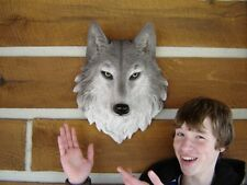 WOLF HEAD LARGE  WALL  MOUNT LODGE CABIN LOG TAXIDERMY