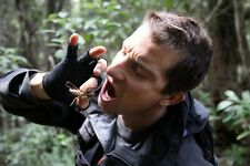 POSTER BEAR GRYLLS MEN VS WILD ULTIMATE SURVIVAL L'ULTIMO SOPRAVVISSUTO NATURA 6