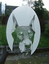 DOBERMAN  Vinyl Window Decoration / Static Cling / Decal  Window Sticker 10x15cm