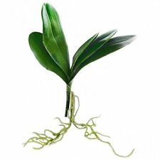 33cm Artificial Orchid Leaves & Roots - Fake Flower - Plant with Root