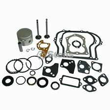 Overhaul Kit Briggs & Stratton 5 Hp Std   (785-576)
