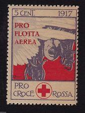 # ERINNOFILI: 1917-  PRO CROCE ROSSA E FLOTTA AEREA