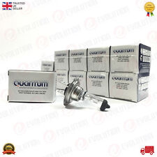 10X QUANTUM HALOGEN HEADLIGHT BULB H7 (499) 12V 55W
