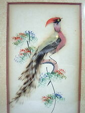 Pictures Bird of Paradise and Parrot Set of 2 Vintage Feather Art Framed Glass
