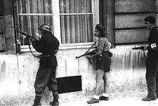 WW2 Photo French Resistance Members  WWII France