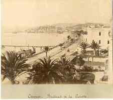 France, Cannes, boulevard de la croisette  Vintage albumen print  Tirage album