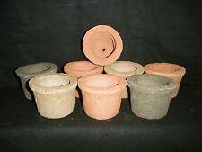 8 Beautiful and Unique Hand Made Mini  Hypertufa Pots & 50 Delonix Regia Seeds