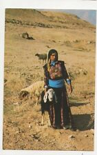 Beduin Women With Their Flock Postcard 086a