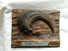 jurassic park icons prop Velociraptor Claw reproduction