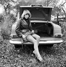 1960s European Pinup Pulled up skirt on rear of open trunk 8 x 8 Photograph