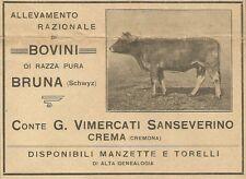 W3426 Conte Vimercati Sanseverino - Allevamento Bovini - Pubblicità 1915 - Adv.