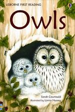 Owls (Usborne First Reading: Level 4)