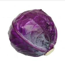 Red Acre Cabbage seeds (Pack of 25 Seeds) V-010