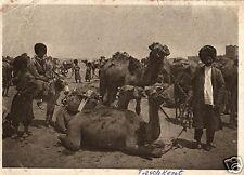 9103/ Foto AK, Taschkent, Usbekistan, Einwohner, Kamele, 1931 nach Bielefeld gel