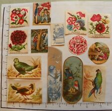 24 VARIOUS SHAPES SIZES SCRAP BOOK FILL INS FLOWERS HOUSES ETC 1722