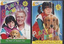 PUNKY BREWSTER BEST OF SEASONS 2 & 3 Soleil Moon Frye George Gaynes 2 NEW  DVDs