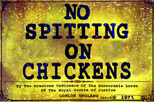 No Spitting on Chickens Steel & Enamel Painted Display Metal Sign