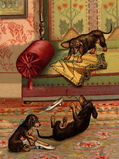 DACHSHUND CHARMING DOG GREETINGS NOTE CARD CUTE DOGS PLAY WITH LADIES CORSET