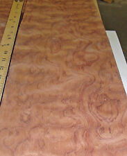 "Waterfall Figured Bubinga (Kewazinga) wood veneer in 8"" x 144"" raw no backing"