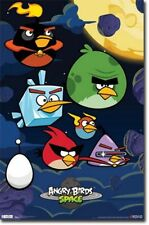 VIDEO GAME POSTER Angry Birds Space Birds