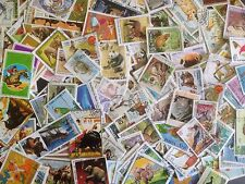 4000 Different Animals on Stamps Collection