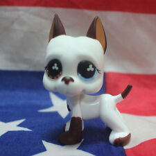 #577 LPS Littlest Pet Shop Great Dane DOG Blue Eye / Brown Rare