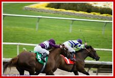The Only One II Handicapping Horse Racing System - 32% WIN w/ $9 Avg - Tom Worth