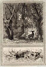 EAU FORTE / Fables de la Fontaine 1883 / LE CERF ET LA VIGNE